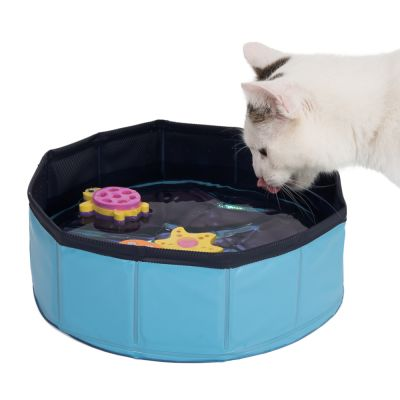Kitty Pool