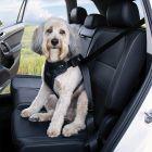 Kleinmetall DogMaster 2.0 TÜV Crash-Tested Dog Safety Harness