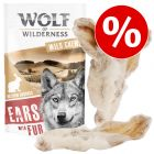 Knaller-Sparpaket Wolf of Wilderness Kauohren