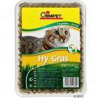 Kočičí tráva Gimpet Hy-Gras 150 g
