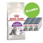 Kombinasjonspakke : tørrfôr + Royal Canin i saus