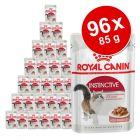 Økonomipakke: 96 x 85 g Royal Canin vådfoder