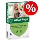 10% korting! Advantage voor honden