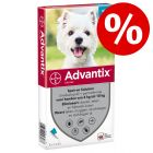 15% korting! Advantix® spot-On Solution voor honden