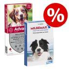 10% korting! Beschermingspakket half jaar Hond
