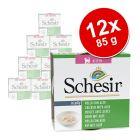 Korzystny pakiet Schesir Kitten dla kociąt, 12 x 85 g