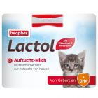 Lait beaphar Kitty-Milk pour chaton