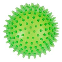 Large Spiky Ball Dog Toy