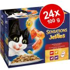 Latz Sensations Jellies 24 x 100 g