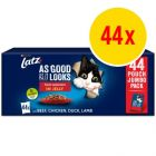 """Latz """"As good as it looks"""" Adult Pouch 44 x 85 g"""
