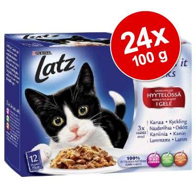 """Latz """"As good as it looks"""" hyytelössä 24 x 100 g"""