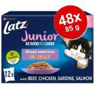 "Latz ""As good as it looks"" Junior Pouches 48 x 85 g"