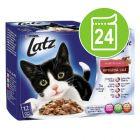 Latz  ''Double delicious'' 24 x 100 g