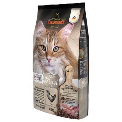 Leonardo Adult Maxi Grainfree pour chat