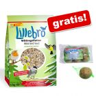 Lillebro karma dla dzikich ptaków niezawierająca łusek + kule, 30 x 90 g gratis!
