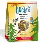 Lillebro szárított lisztkukac