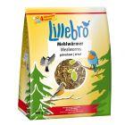 Lillebro Vers de farine séchés, oiseaux sauvages