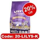 Lily's Kitchen Adult 8+ Salmon & Trout Dry Dog Food