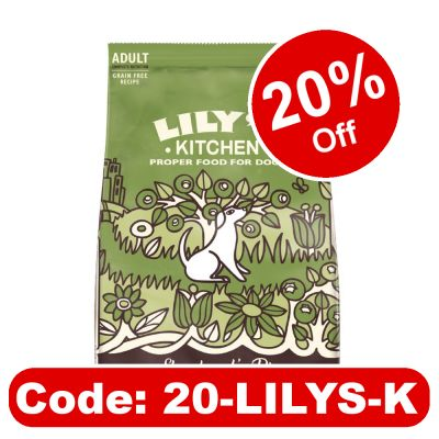 Lily's Kitchen Lamb Shepherd's Pie Natural Grain Free Adult Dry Dog Food