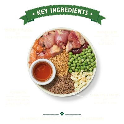 Lily's Kitchen Puppy Dry Dog Food - Chicken, Salmon & Peas