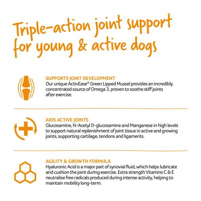 Lintbells YuMOVE Joint Supplement for Young and Active Dogs