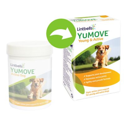 Lintbells YuMOVE Young and Active Dog Supplement