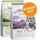 Little Wolf of Wilderness Junior -kokeilupakkaus (2 x 1 kg)