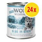 Little Wolf of Wilderness Multibuy 24 x 800g