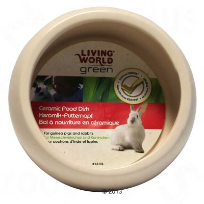 Living World Green Ergo Ceramic Small Pet Bowl