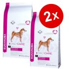 Lot Eukanuba Breed et Daily Care, x 2 pour chien