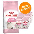Lot mixte Royal Canin Kitten 400 g  + 12 x 85 g Kitten Instinctive