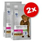 Lot PERFECT FIT pour chien