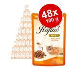 Lot Animonda Rafiné Soupé 48 x 100 g pour chat