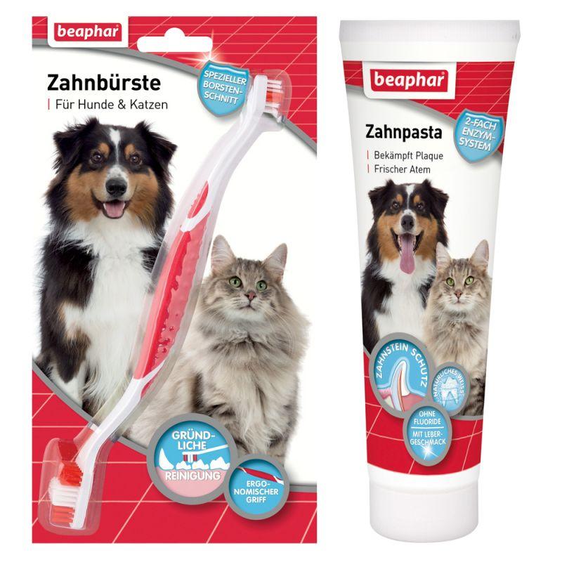 Lot beaphar Brosse à dent + dentifrice pour chien et chat