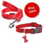 Lot Bobby Safe, rouge : collier + laisse pour chien