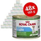 Lot économique Royal Canin 48 x 195 g
