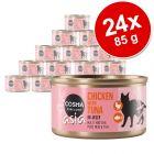 Lot Cosma Asia en gelée 24 x 85 g pour chat