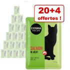 Lot Cosma Original ou Thai/Asia 20 x 100 g + 4 x 100 g offerts !