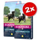 Lot de croquettes pour chien Eukanuba grand format x 2