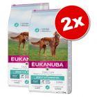 Lot Eukanuba Breed et Daily Care, x 2 pour chien