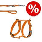Lot : harnais HUNTER London Vario Rapid + laisse London, orange pour chien