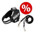 Lot : Harnais Julius-K9 IDC® Power, noir pour chien + Laisse double caoutchoutée Julius-K9