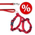 Lot HUNTER : harnais + laisse Ecco Sport Vario Rapid, rouge pour chien