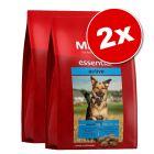 Lot MERA essential pour chien
