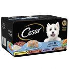 Lot mixte Cesar Senior 10+ pour chien