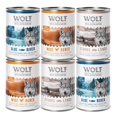 Lot mixte Wolf of Wilderness Adult pour chien