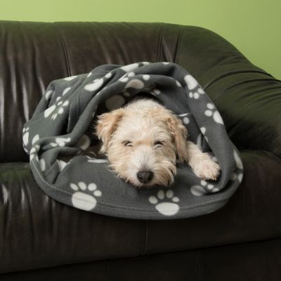 Lot : niche pliable First Class Basic + couverture polaire Pawty pour chien