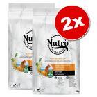 Lot Nutro Core pour chien