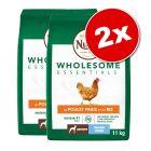 Lot Nutro Wholesome Essentials pour chien