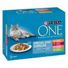 Lot PURINA ONE 8 x 85 g pour chat